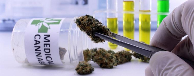 Cannabis bei Asthma